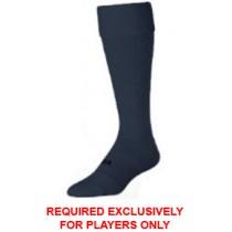Neuqua - Socks